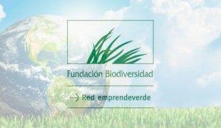 Red emprendeverde - Univergia