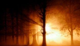 iluminacion-univergia